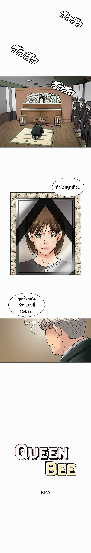 ควีน บี 7 ภาพ 1